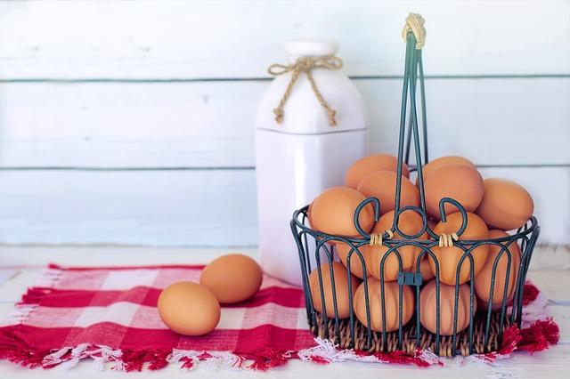 ביצים אורגניות